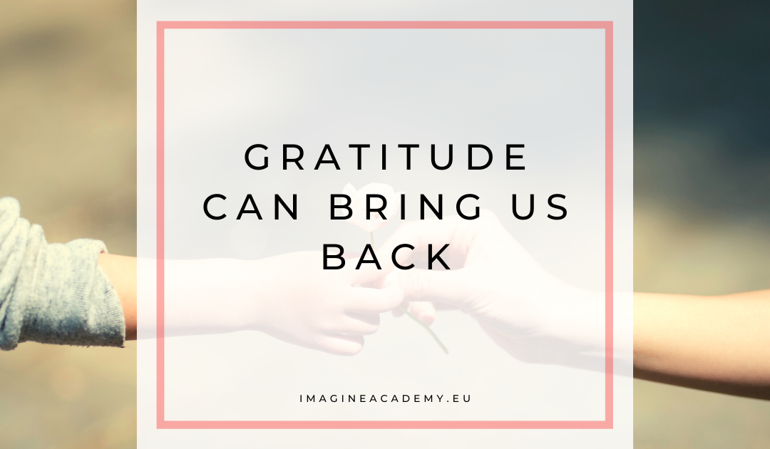 Gratitude can bring us back